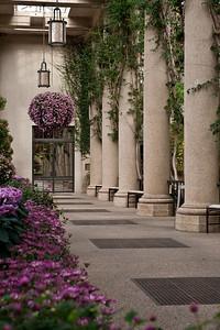 Plant House Columns