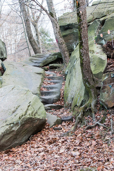 11/20/13.  Old steps in the stone.