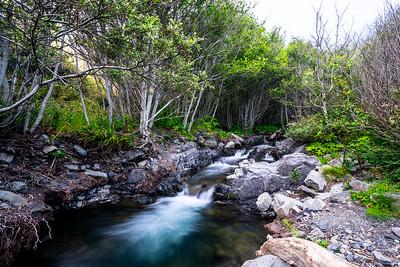 Lost Coast Creek