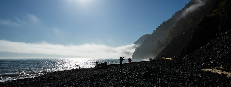 Lost Coast Fog