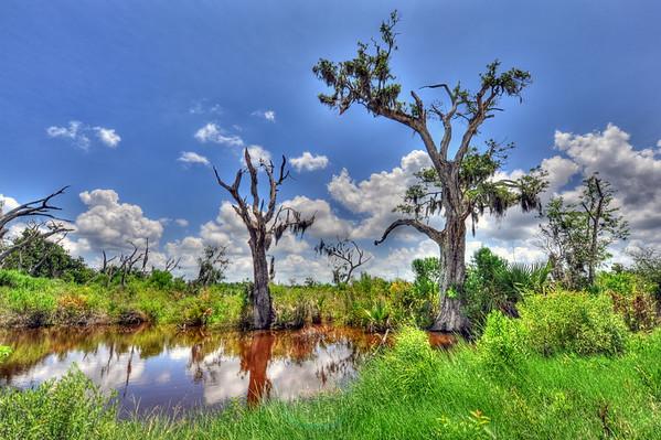 Hermitage Bayou, Louisiana