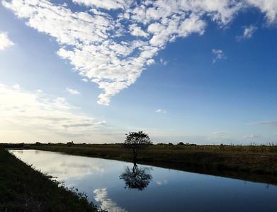 everglades canal.jpg