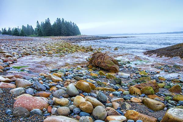 Rocky shore at the Sea Wall