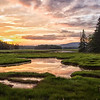 Marshall Brook, Bass Harbor Marsh, Acadia N.P.
