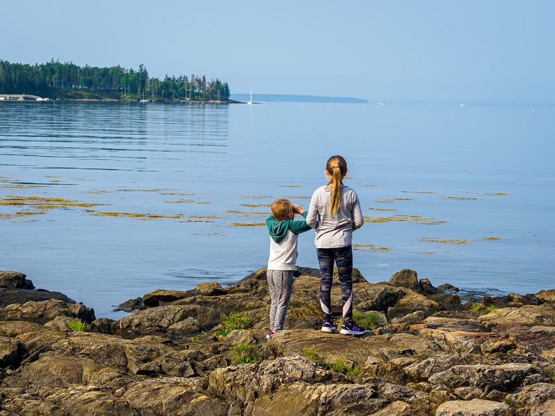 Birding at Seal Cove