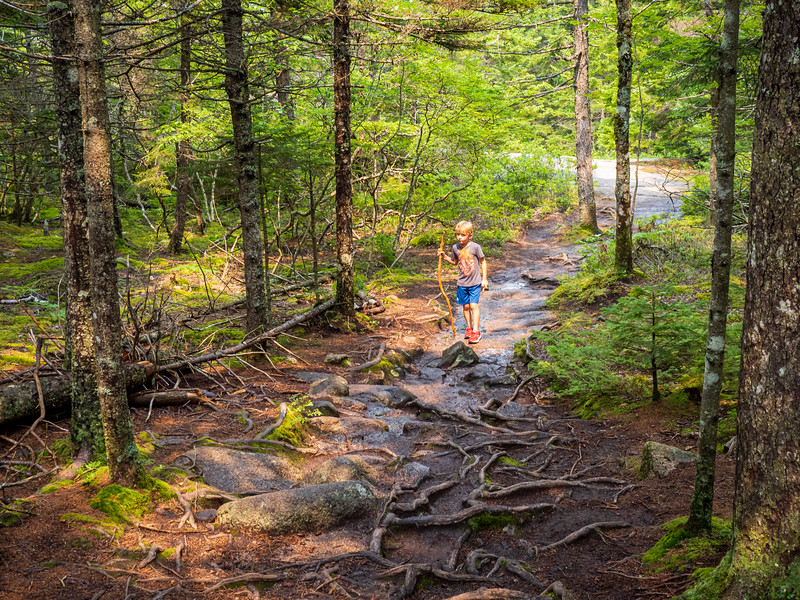 Beech Mountain Trail, Acadia
