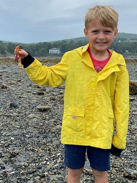 Crab Claw find