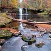 My Favorite Colors -- Wolf Creek Falls