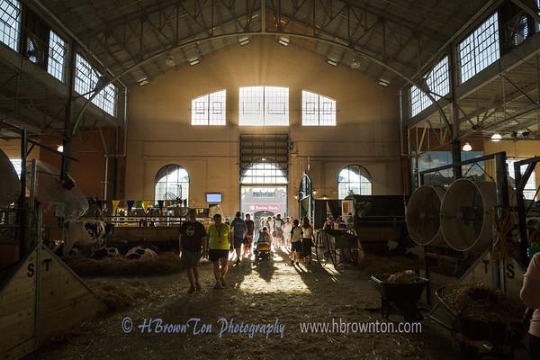 MN State Fair Cattle Barn