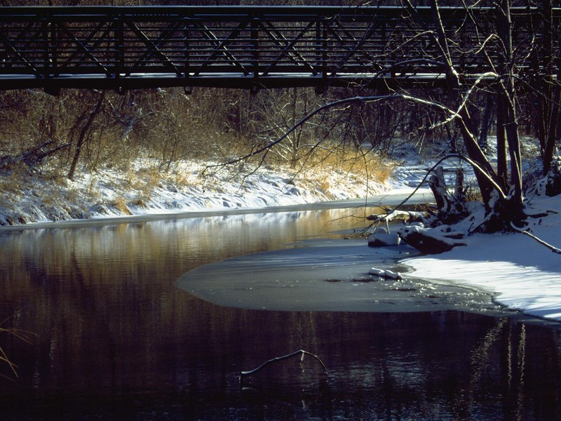Winter Bridge Scene