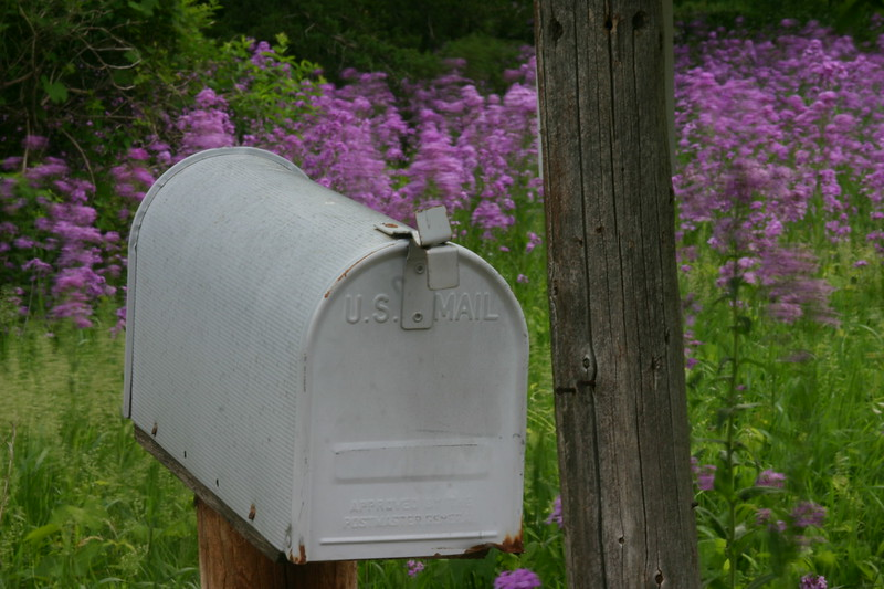U. S. Mail