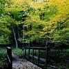 trail bridge fall
