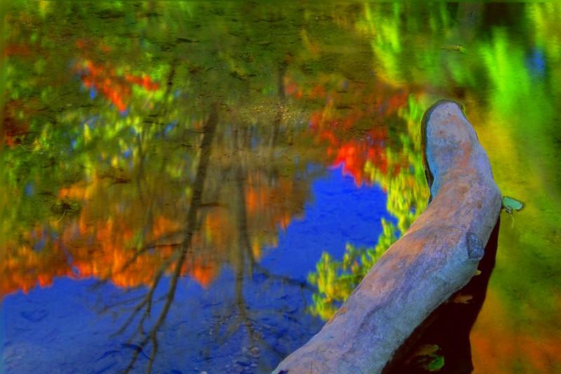 Log in River
