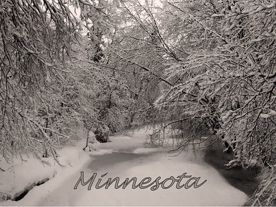 Minnesota winter