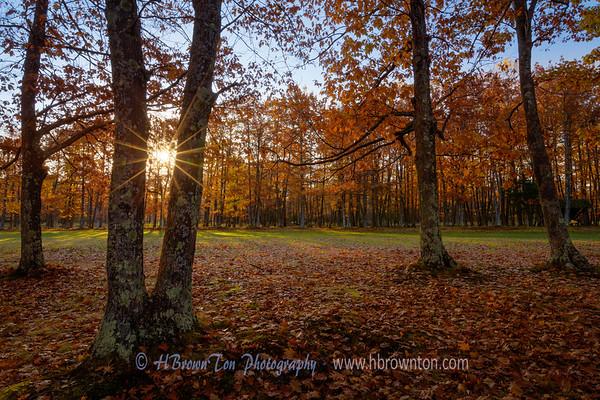 Sunrise on the 7th Hole