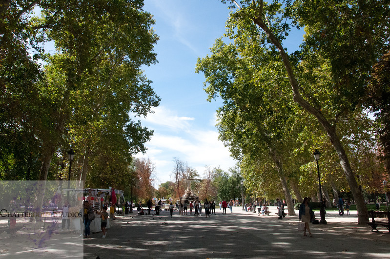 A stroll through El Retiro Park in Madrid