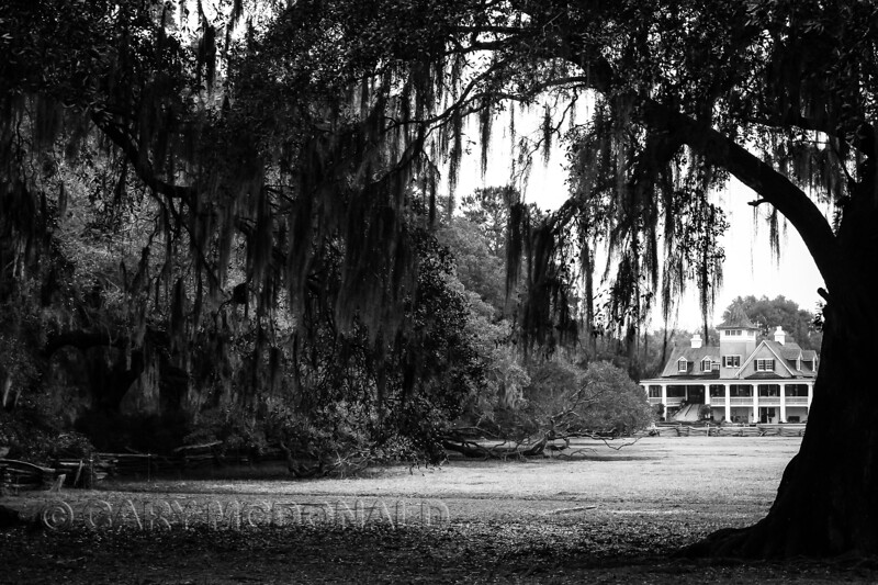 Magnolia Plantation with an older feel with B&W