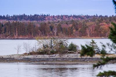 20121007-Maine October-06336