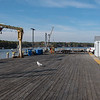 Town pier