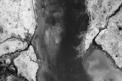 Manistee River Aerial Black and White