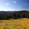 Alpine Meadow<br /> <br /> Another view from the Alpine Meadows recreation area in Manning Park.