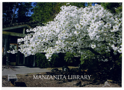 Volunteers landscaped the grounds and planted the cherry tree in 1988.