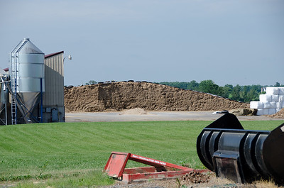 Sand for the cows