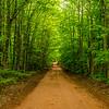 Back Road III