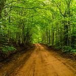 Back Road I