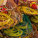 Lobster Pot Colour
