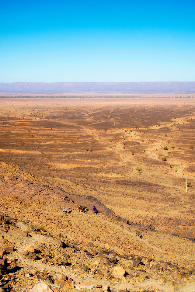 Marocco plains