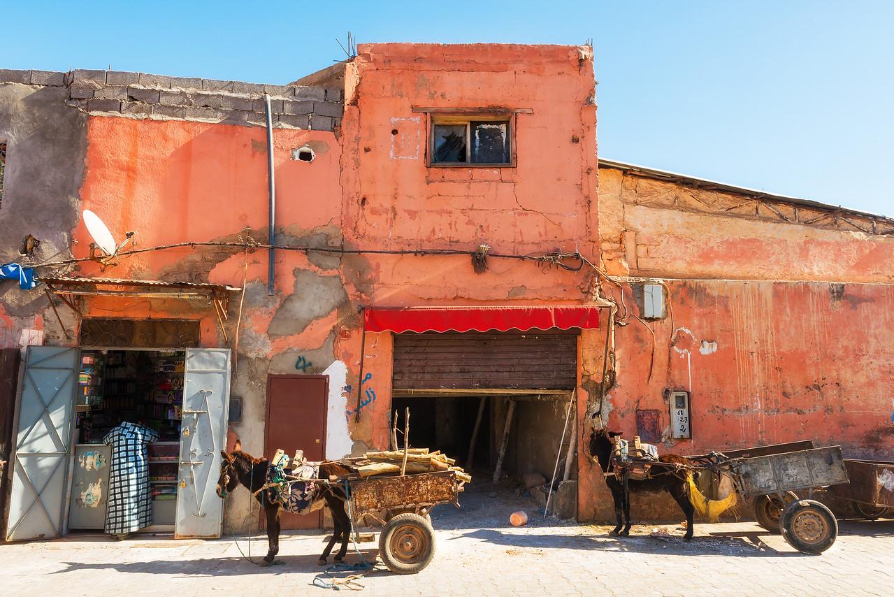 Morning in Marrakech