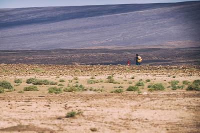 Sahara life