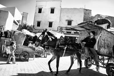 Marrakech street life