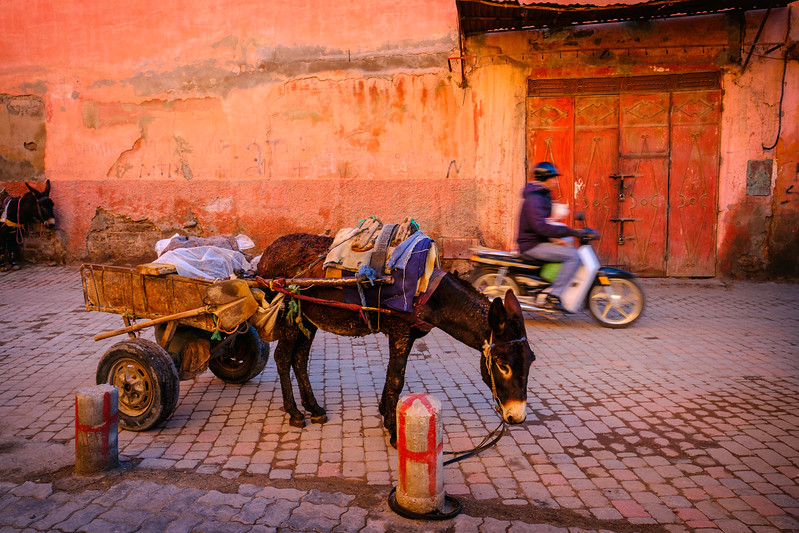 Old and new in Marrakech
