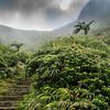 Martinique Mountains 2017