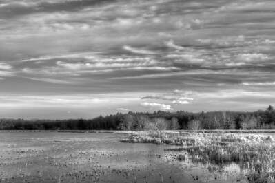 3 December 2011. Great Meadows NWR in Concord MA. View of dike between Lower Pool (left) and Upper Pool (right). Photo taken with Nikon D90 and Nikkor 24-70 mm with yellow/orange filter (040M) and circular polarizer. HDR photo processed with Photomatix Pro 4.1, Nik Silver Efex Pro 2, and Adobe Photoshop CS5.
