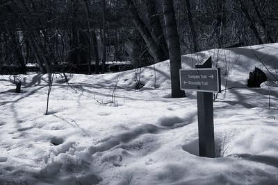 20150329.  Oxbow National Wildlife Refuge, MA.