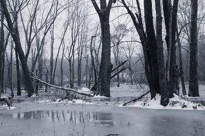 20150104.  Oxbow National Wildlife Refuge, MA.