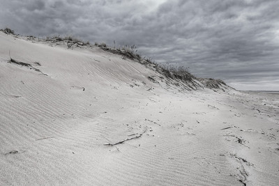 01Apr2012. Beach dunes at Parker River NWR. Taken with Nikon D90 and Nikkor 14-24-mm lens. Processed with Adobe Photoshop CS5, Photomatix Pro 4.1,and Nik Silver Efex Pro 2.