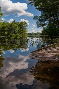 20120623. Calm on Whitehall Reservoir, Hopkinton MA.  Taken with Nikon D90 and 16-mm fisheye Nikkor lens.