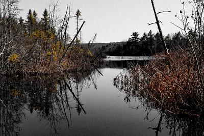 20120318.  Whitehall Reservoir, Hopkinton MA.