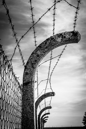 electrified barbed wire