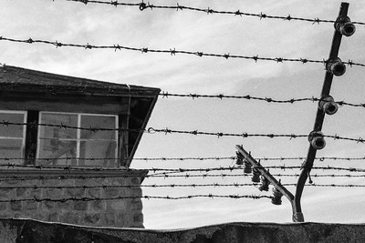 electrified barbed wire and towers