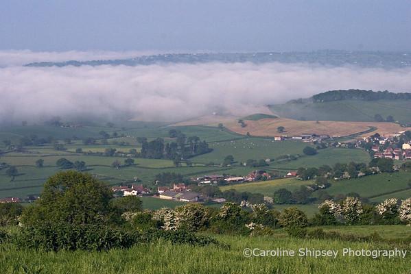 View towards Lodge Hill, Westbury sub Mendip Mendip Landscape
