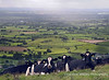 View from Deer leap across the Somerset Levels Mendip Landscape