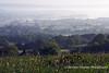 View towards Chew Lake from Ridge Lane Mendip Landscape