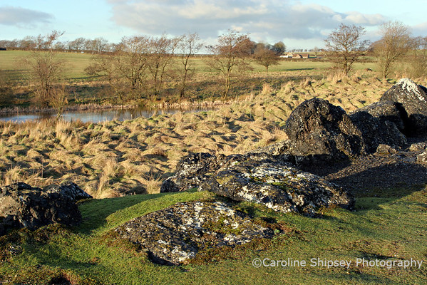 Blackmoor Reserve, boulders are the slag remains of lead smelting in Victorian times Mendip Landscape