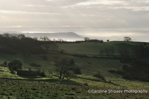 Winter light on the Mendips