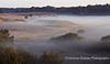 The Minories with early mist Mendip Landscape